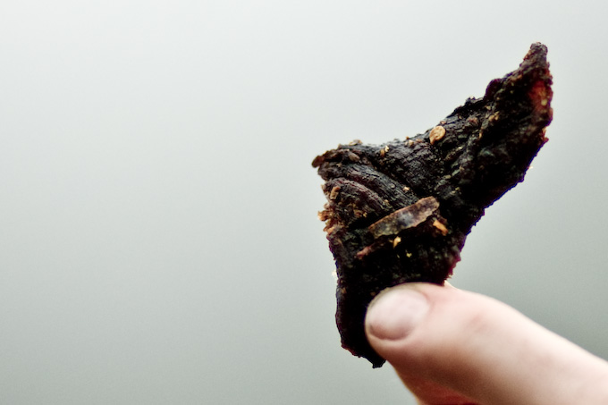 person holding a piece of beef jerky
